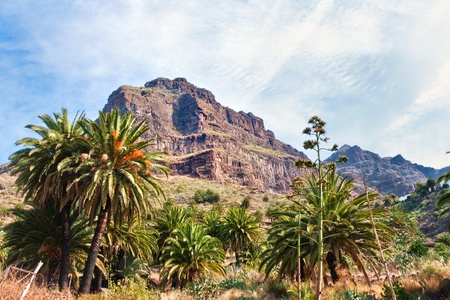 A view of the Teno Mountains at Masca, Tenerife in the Spanish Canary Islands Stock Photo - 11559784