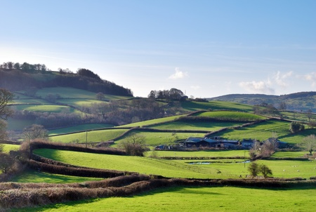 Lush green countryside criss-crossed with agricultural fields and hedgerows in Crosthwaite, Cumbria, England. photo