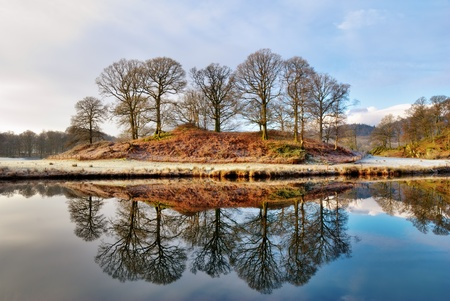 Copse of bare deciduous trees in winter reflected in the calm water of a lake on a frosty morning at Elterwater, Langdale, English Lake District Stock Photo