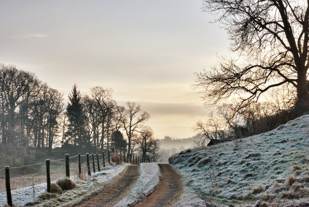 An empty dirt farm track passing alongside a fence through frosty countryside leading in to a misty sunrise, Langdale, English Lake District photo