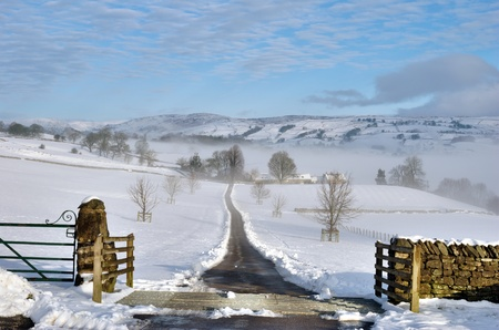 covered fields: Farm track cleared of snow leading off in to the distance across snow covered fields, gate in foreground.
