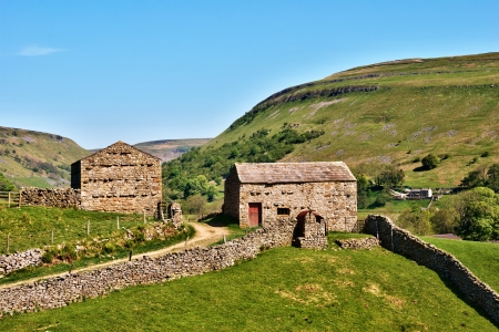 Quaint old stone barns surrounded by dry stone walls enclosing green fields on the gently rolling hills in Swaledale in the Yorkshire Dales National Park