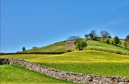 Pastoral scene of lush English meadows on a gentle hillside slope crossed by a traditional dry-stone wall in the Yorkshire Dales Stock Photo - 14442836