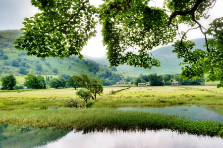 A view of Brother s Water and Hartsop in the English Lake District with hanging leaves in the foreground Stock Photo - 15160265