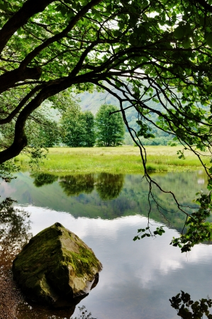 A rock and an overhanging tree on the shore of Brothers Water, in the English lake District Stock Photo - 15256368