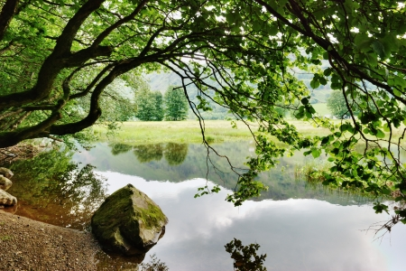 A rock and an overhanging tree on the shore of Brothers Water, in the English lake District Stock Photo - 15256367