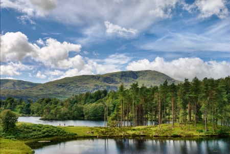 A view of Tarn Hows, a small lake in the English Lake District with Wetherlam in the background Stock Photo - 15396833