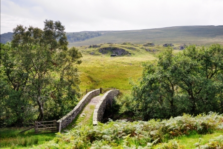 A small packhorse bridge in a moorland setting flanked by trees Stock Photo