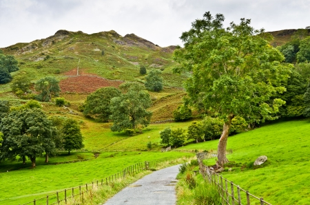 A winding pathway under Loughrigg Fell in Langdale, the English Lake Disrict photo