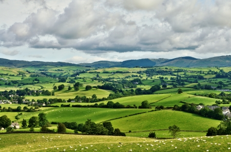 Pastoral scene of lush green English farmland photo