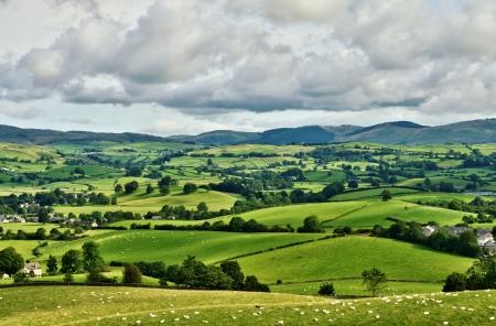 rolling hills: Pastoral scene of lush green English farmland
