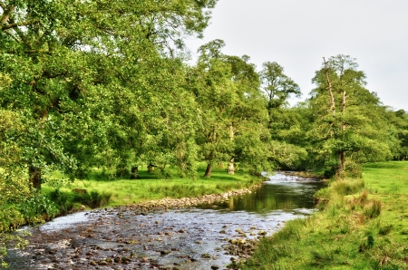 A shallow, tranquil, rock strewn  river flowing through lush English countryside, with tree lined banks and green pastures on a peaceful Summer