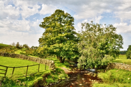 A stream flowing gently through an English pastoral landscape with overhanging trees, and set against a blue sky with Cumulus clouds Stock Photo