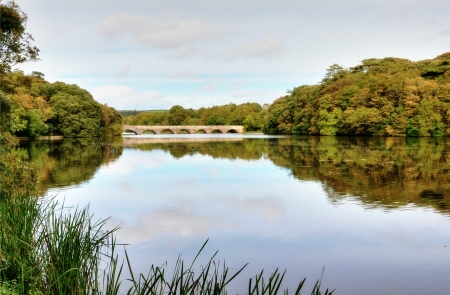 Lily Ponds, a lake bordered by trees on the Stackpole Estate at Bosherston, with tranquil reflection and  a distant view of Eight Arch Bridge Stock Photo - 16669937
