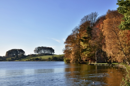 Talkin Tarn, a glaciated lake fed by underwater streams, in Talkin Tarn Country Park, Brampton, Cumbria, bordered by trees in autumnal hue Stock Photo - 17011031