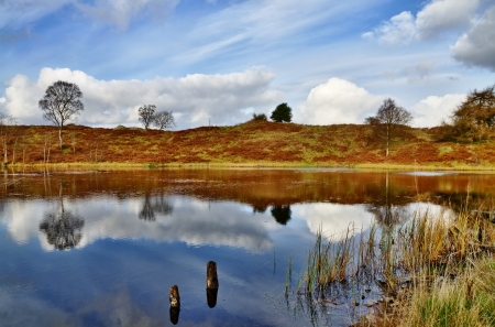 Peaceful reflections in Podnet Tarn, a small lake in the Winster Valley, in the English Lake District, with two wooden posts and reeds at the shallow waters edge Stock Photo - 17206401