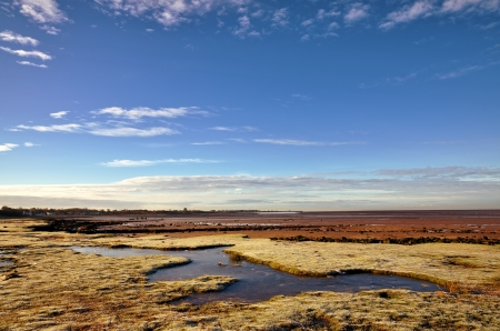 Frosted grass and an icy frozen pool in Morecambe Bay, near Hest Bank, Lancashire, on a crisp winter day, with a blue sky and altocumulus clouds Stock Photo - 17531795