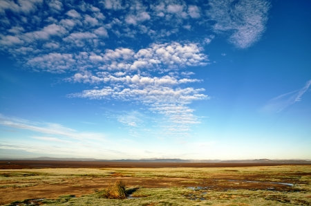 A view of grass covered mud flats and pools in Morecambe Bay, with a blue sky and altocumulus clouds, on a sunny winters day Stock Photo - 17531794