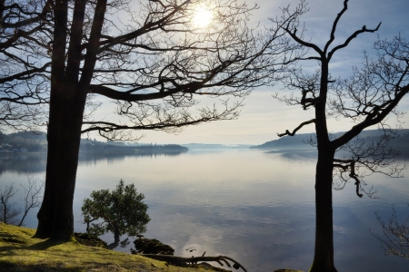 A view of Windermere, in the English Lake District, on a calm winter morning, framed by two trees with the sun shining through a network of branches Stock Photo - 18785311