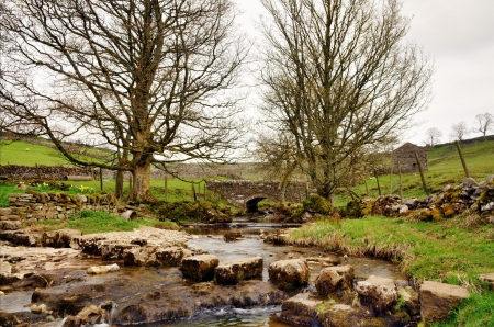 gill: View of stepping stones crossing Cray Gill with a bridge and two trees near Hubberholme in Upper Wharfdale, the Yorkshire Dales, England