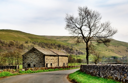 A stone built barn and solitary tree at the side of a country lane in the Yorkshire Dales, England, set again a backdrop of fells Stock Photo - 19969669