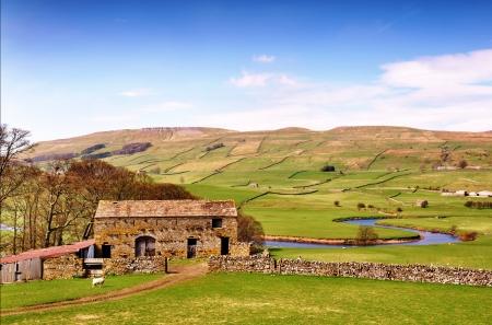 Zbudowany z kamienia stodole i drzewa przez Rzeka Ure, rozwiązania jego sposób poprzez spokojnej wsi w Yorkshire Dales, Anglia