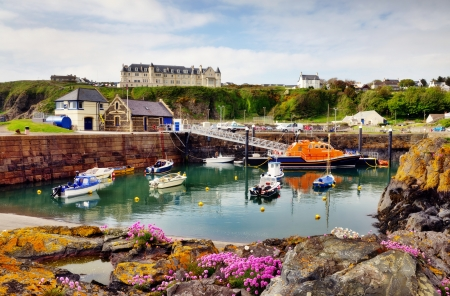 View of boats and a lifeboat in Portpatrick harbour in southwest Scotland,with a foreground of thrift and lichen covered rocks Stock Photo - 20502891