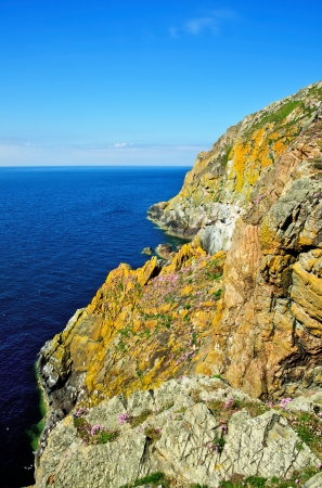 View of lichen covered jagged cliffs with thrift growing on the Mull of Galloway, South West Scotland Stock Photo - 20884910