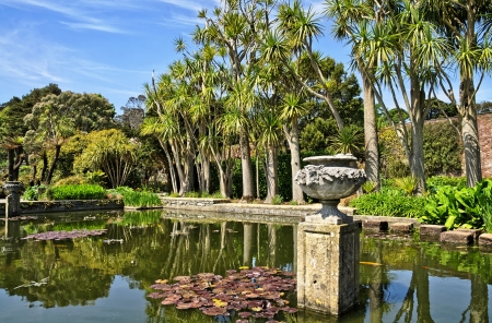 View of a palm fringed pond with Lily pads in Logan Botanic Gardens on the Mull of Galloway in South West Scotland Stock Photo - 21933947