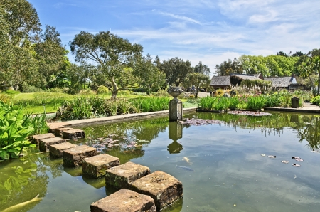 View of stepping stones crossing the pond in Logan Botanic Gardens on the Mull of Galloway in South West Scotland Stock Photo - 21933948
