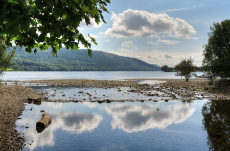 Cloud reflections in Coniston Water and an overhanging tree in the English Lake District, Cumbria Stock Photo - 23866353