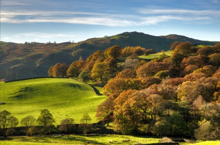 cumbria: View of an English rural landscape on an autumn day