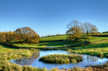 Autumnal view of a small pond with grassy island and trees Stock Photo - 24742918