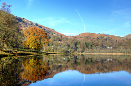 Reflections in Grasmere with a autumnal tree on a sunny day in the English Lake District Stock fotó
