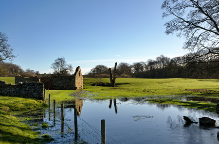 View of a ruined barn in a flooded field with trees photo