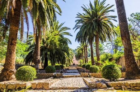 Alfabia gardens, or Los jardines de Alfabia, in Mallorca, Spain.