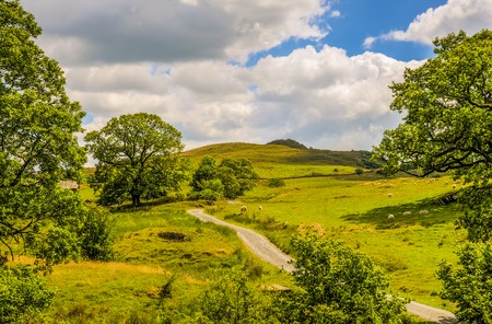 recedes: Scenic view of the green countryside landscape of Cumbria with a narrow road in the foreground, England. Stock Photo