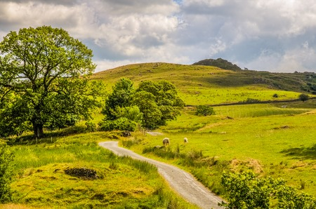 recedes: Scenic view of a picturesque rural scene in Cumbria, England. Stock Photo