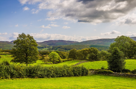 Scenic view of the green countryside landscape pictured near Millon in Cumbria, England. Stock Photo