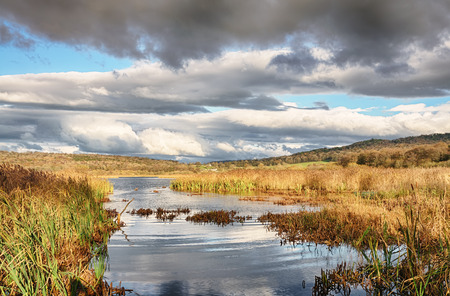 The RSPB bird reserve at Leighton Moss, Lancashire, England, with reeds and water.