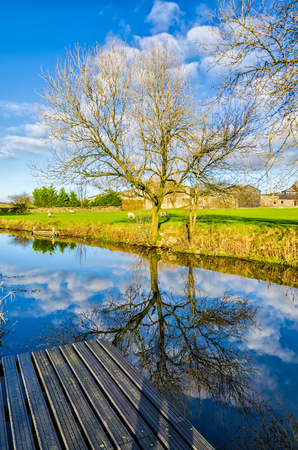 strongly: Sunny Winter afternoon on Lancaster Canal in Cumbria, England with bare trees,  blue sky and cloud strongly reflected in the still waters.