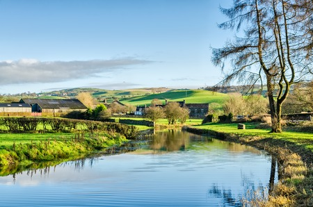 verdant: Lancaster Canal near Crooklands, Cumbria, England wending its way through verdant agricultural countryside on a sunny day with blue sky.