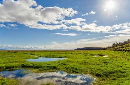 horizon reflection: Clouds reflecting in pooling water in green fields near coastline in Grange-over-sands in Cumbria, England. Stock Photo
