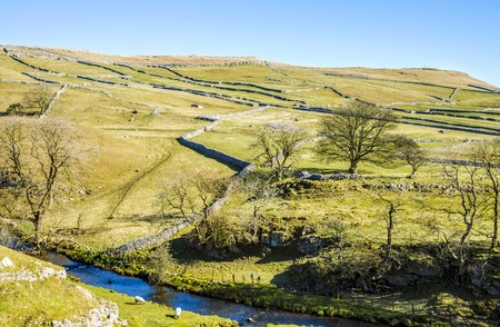 characteristic: Malham Beck, North Yorkshire, England surrounded by small fields with characteristic limestone walls and trees with bare branches. Stock Photo