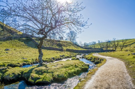 beck: Malham Beck with public footpath beside and trees set in an attractive landscape near Malham Cove. North Yorkshire, England.