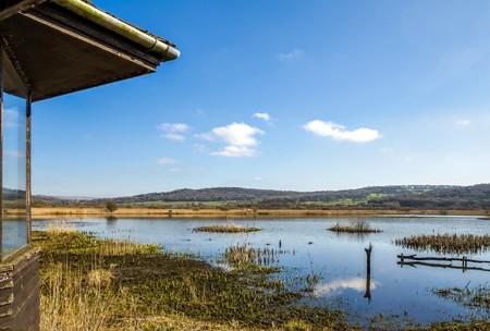 Bird hide overlooking marshland at Leighton Moss RSPB bird reserve in Lancashire, England on sunny day.