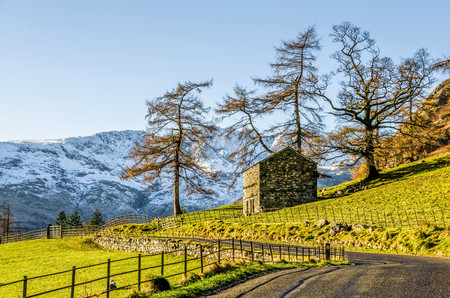 Small hut on green hillside with trees in front of mountains in Langdale, English Lake District, UK. Stock Photo