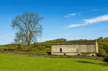 A barn and tree set in English countryside with a green field in the foreground and a wood beyond. Stock Photo