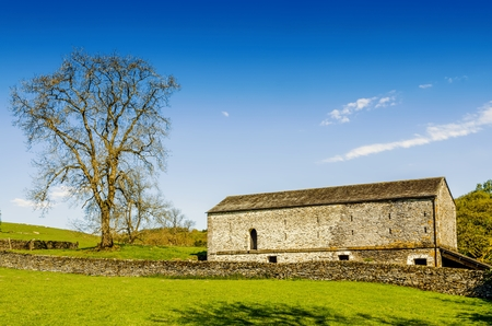 A barn and tree set in English countryside with a green field in the foreground under a blue sky. Stock Photo