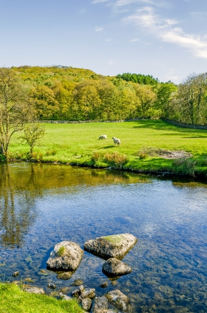 The river Kent near Staveley, Cumbria with rocks in the foreground and woodland in the distance.